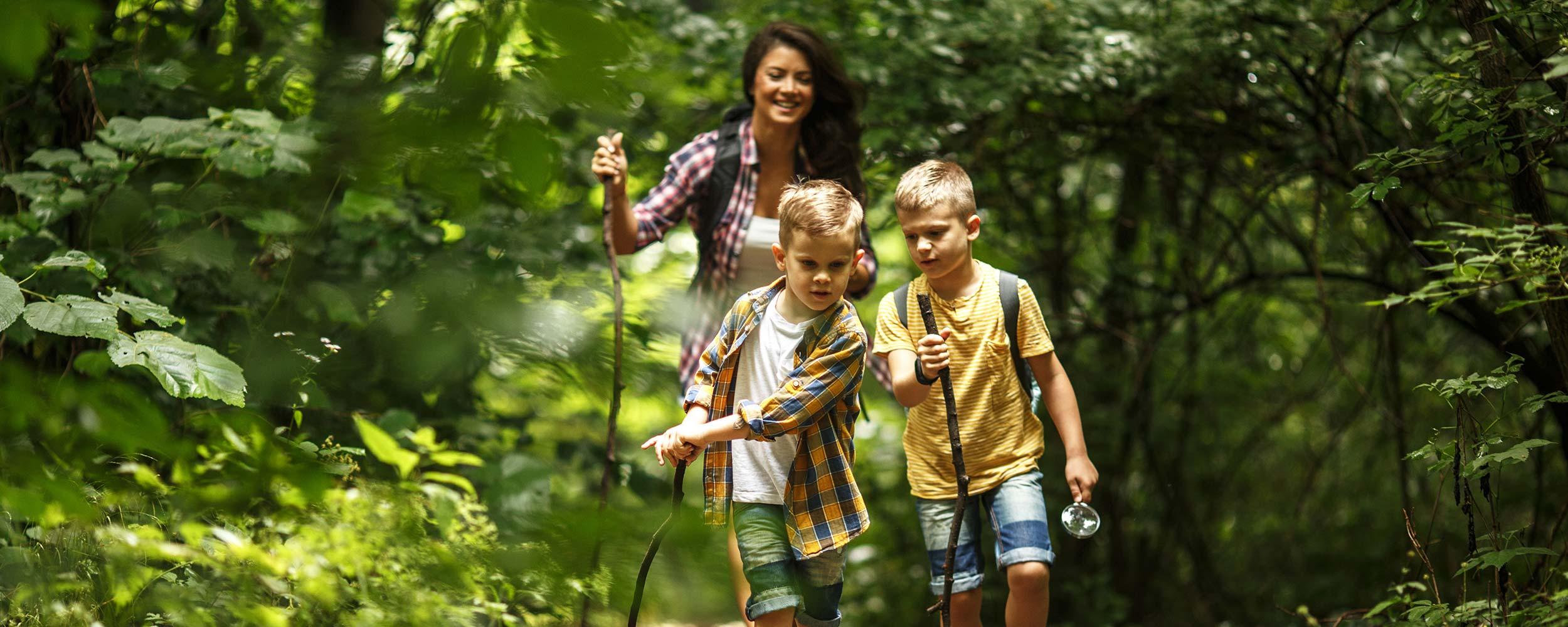 Familie im Wald bei einer Wanderung im Familienurlaub | Oberhof Hotel Urlaub im Thüringenschanze
