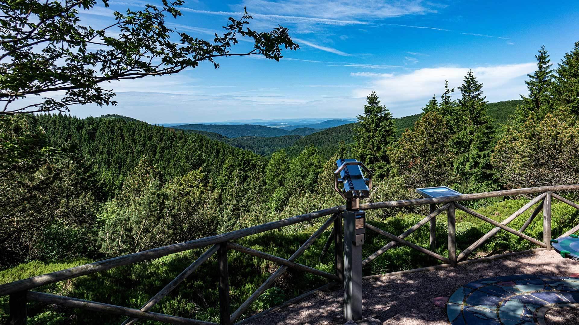 Blick aus dem Rennsteiggarten über den Thüringer Wald | Urlaub in Oberhof