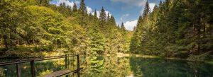 Waldsee im Thüringer Wald | Urlaub in Oberhof im Hotel Thüringenschanze buchen