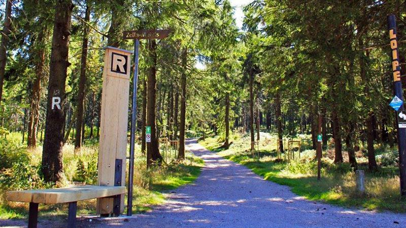 Rennsteig am Rondell bei Oberhof | Urlaub in Oberhof buchen