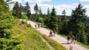 Wandergruppe im Thüringer Wald | Urlaub in Oberhof buchen