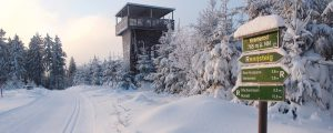 Winter im Thüringer Wald | Oberhof Hotel Urlaub im Thüringenschanze