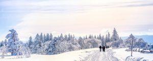 Winterurlaub in Thüringen | Oberhof Hotel Urlaub im Thüringenschanze